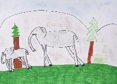 obrázek 1217