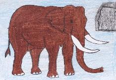 obrázek 1465