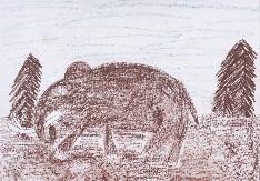 obrázek 1579