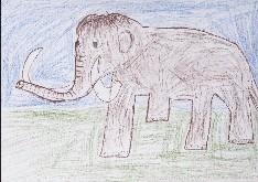 obrázek 1580