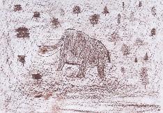 obrázek 1581