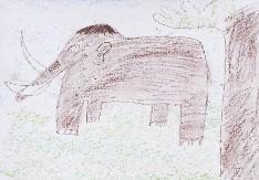 obrázek 1585