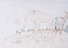 obrázek 1598