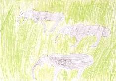obrázek 1614
