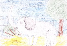 obrázek 1620