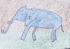 obrázek 1717