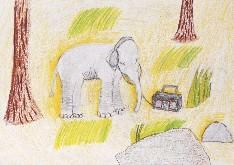 obrázek 1773