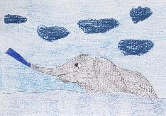 obrázek 1849